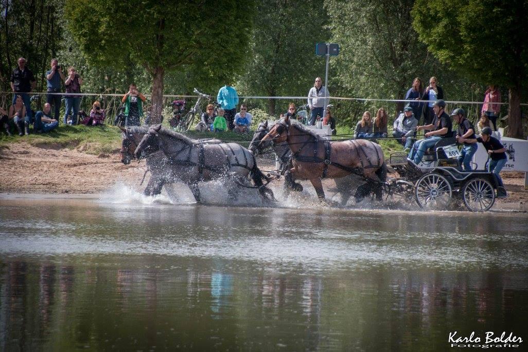 Power Horse Duiven een begrip in Trekpaardenland