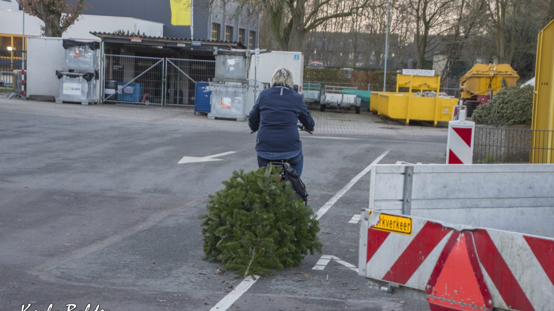 Ontvang geld voor uw kerstboom