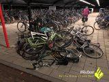 Politie zoekt getuigen vandalisme op het station in Duiven