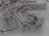 Winters weer met sneeuw in aantocht !